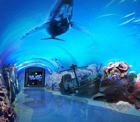海洋数字主题展馆
