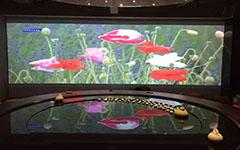 伯思纳纯硬件融合器助力浙江温州澳珀家俱展厅